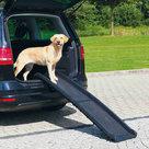 Petwalk-Honden-loopplank-kunststof.-Afmetingen:-40-×-156-cm