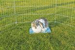 Koelplaat-voor-konijnen-en-cavias