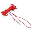 Kattenaanleglijn-nylon-rood-5-m