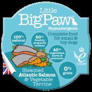 Little BigPaw Steamed Atlantic Salmon & Vegetable Terrine (85g)
