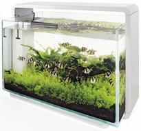 SuperFish Home 60 aquarium wit